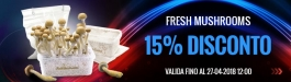 Offerta Fresh Mushrooms